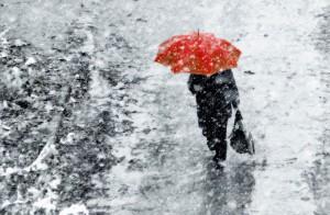 В Брянскую область приходит зима